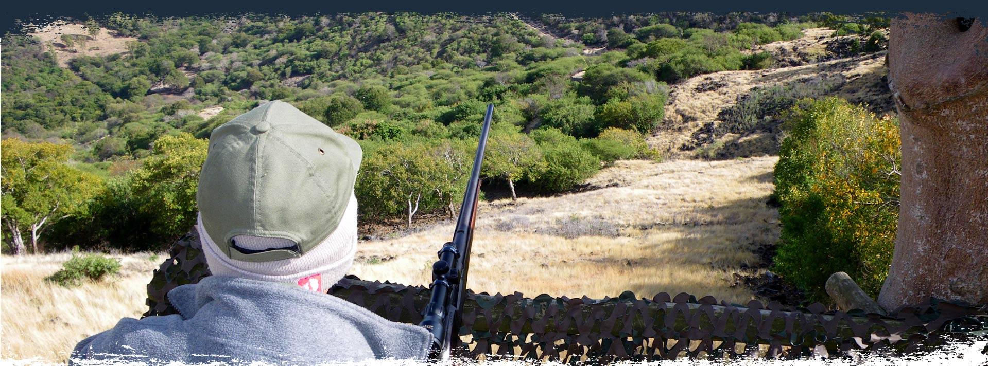 Mauritius fishing and hunting safaris for Fishing and hunting